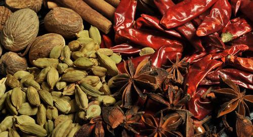Zanzibar : Les épices